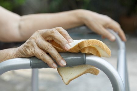 hinder: elderly woman holding a slice of bread for dogs