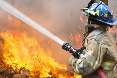 bombera: irefighters combaten un incendio forestal