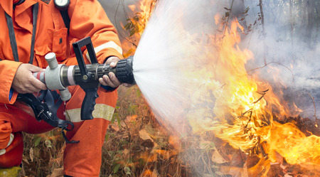 manguera: los bomberos a combatir un incendio forestal