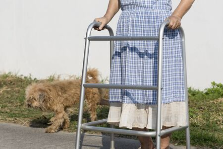 hinder: senior woman using a walker cross street with dog.