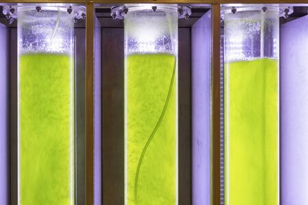 fossil fuel: Photobioreactor in lab algae fuel biofuel industry Algae fuel or algal biofuel is an alternative to fossil fuel that uses algae as its source of natural deposits
