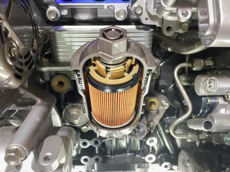 Engine oil filter cross section , display inside materials. Standard-Bild