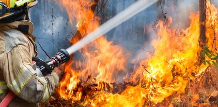 消防士が山火事が発生し水をスプレーします。