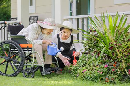 高齢者女性の娘と裏庭の園芸
