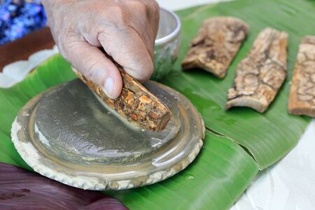 Thanaka herb bark scrubbing on kyauk pyin stone slab . thanaka is a popular cosmetic paste made from ground bark in Myanmar