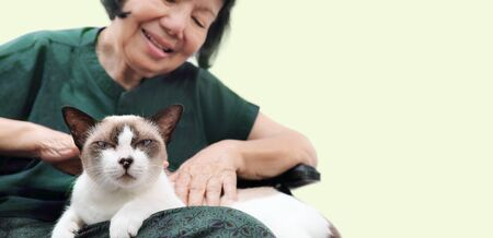 Elderly woman relaxed with her cat.
