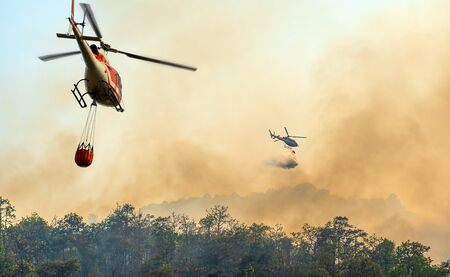 Hélicoptère déversant de l'eau sur un feu de forêt