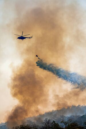 Firefithing helicopter dumps water on forest fire Stockfoto