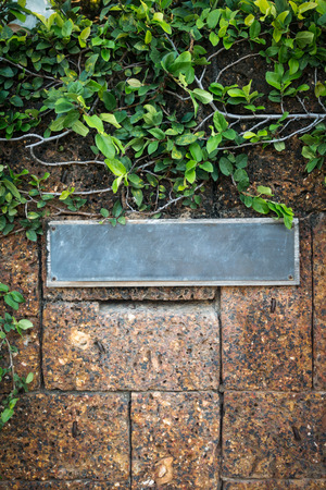 old iron front door label with ivy plant and brown stone brick wall photo