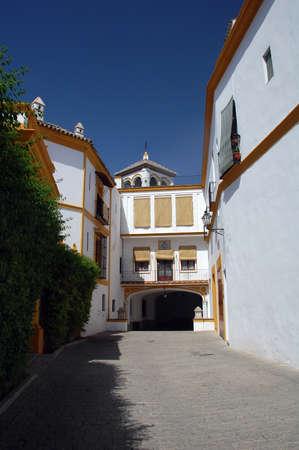 Spanish villa in modern style photo