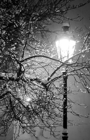 lamppost: Lonely street lamp and tree covered with snow Stock Photo