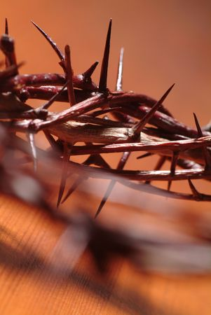 Detail of a crown of thorns Stock Photo - 4459968