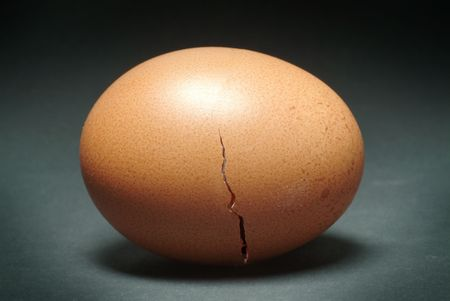 egg shell: Brown Egg with Cracked Shell