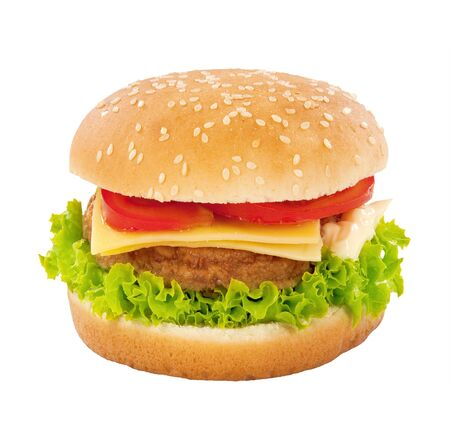 Single cheeseburger Stock Photo - 5441666