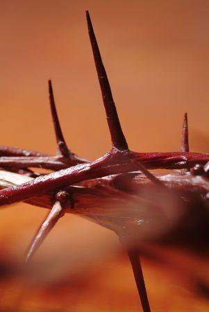 crucified: Corona de espinas