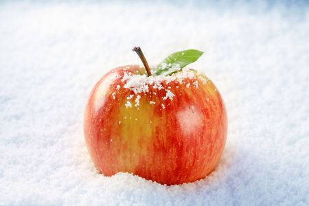 Fresh red apple in snow