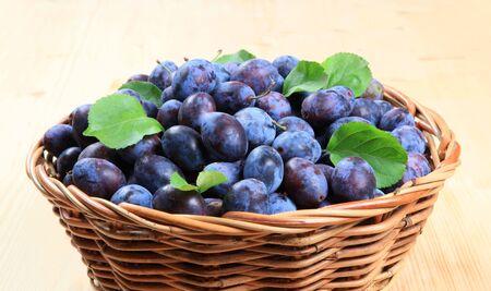Freshly picked damson plums in a wicker basket photo
