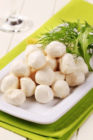 Mozzarella cheese balls on a porcelain platter photo