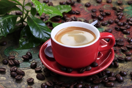 saucer: Cup of coffee with smooth brown foam Stock Photo