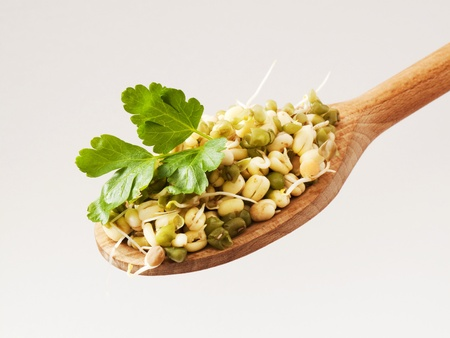 mongo: Mung beans on a wooden spoon - detail