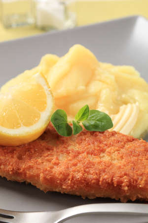 Fried fish fillet and mashed potato - detail