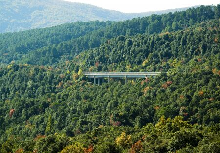 forested: Bridge over a forested valley