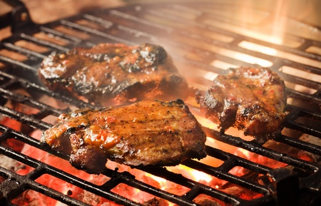 Grilling marinated meat on a charcoal grill Stock Photo - 9727823