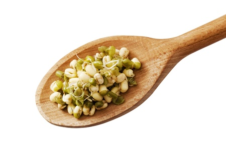 mongo: Mung beans on a wooden spoon - cut out on white