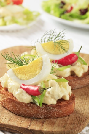 Slices of crispy toasted bread and egg spread photo