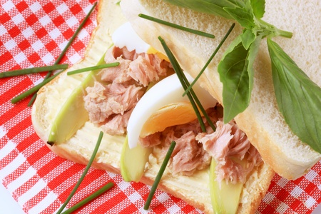 Tuna sandwich with avocado and boiled egg photo