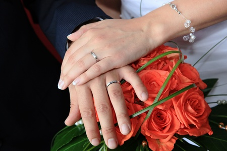rose ring: Hands of the groom and the bride with wedding rings