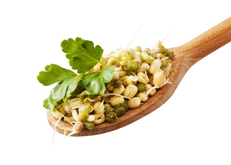 mongo: Mung beans on a wooden spoon -