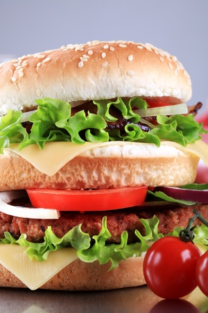 Detail of double hamburger with cheese, tomato and onion Stock Photo - 10915658