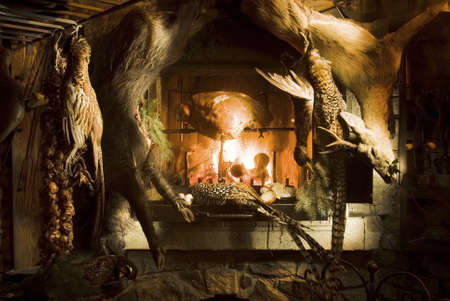 dead duck: Venison hanging at a fireplace  Stock Photo