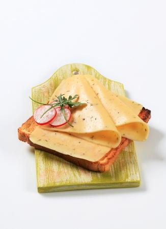 faced: Open faced cheese sandwich - studio