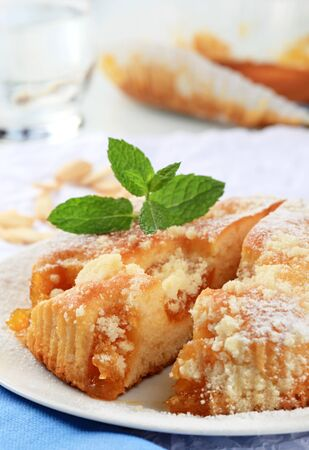 sprinkled: Small apricot cake sprinkled with streusel