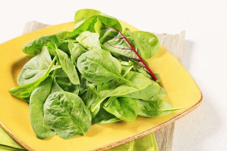 Young Swiss chard leaves on square plate  photo