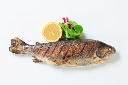 vis: Studio shot van gegrilde forel Stockfoto
