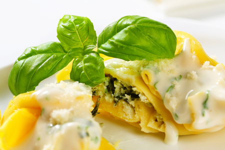 Spinach and ricotta stuffed pasta served with white cream sauce and grated Parmigiano Stock Photo - 22424340