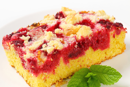 Piece of raspberry crumb cake