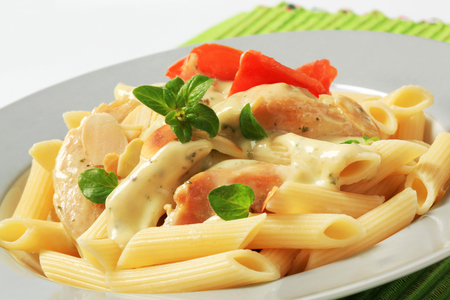 Pasta tubes, chicken meat and broccoli sauce photo