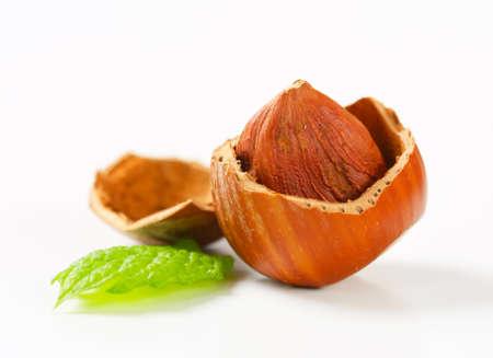 nutshell: Hazelnut in a cracked nutshell Stock Photo
