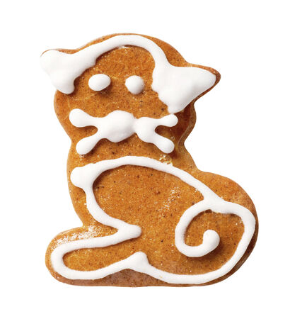 gingerbread cookie: Gingerbread cookie in the shape of a cat