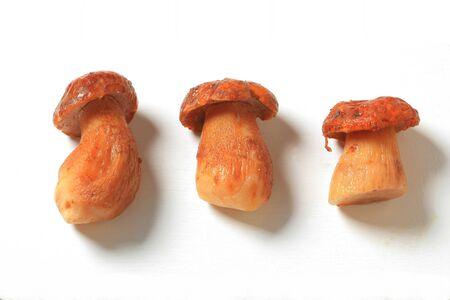 porcini: Porcini mushrooms on a white cutting board