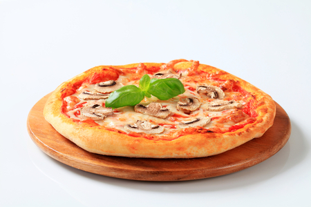 button mushroom: Pizza with mushrooms and mozzarella