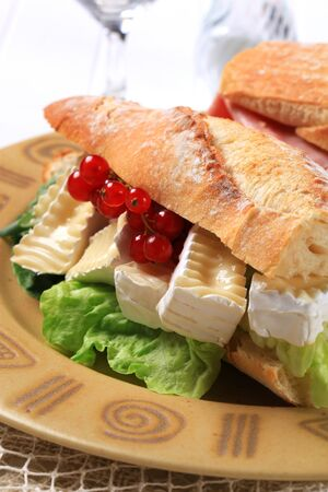 sub sandwich: Sub sandwich with white rind cheese and lettuce