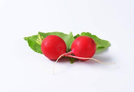 radishes: Two fresh red radishes on white background