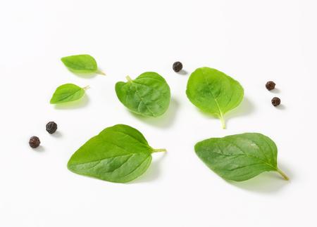 oregano: Fresh oregano leaves and black peppercorns Stock Photo