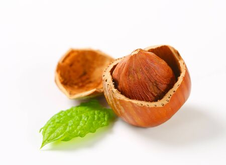 Hazelnut in a cracked nutshell Stock Photo