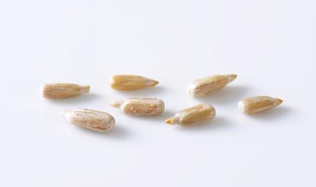 semillas de girasol: semillas de girasol en bruto en el fondo blanco